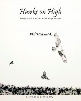 Hawks on High Book Signings